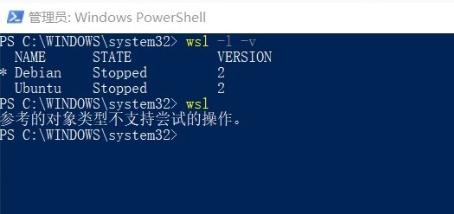 """关于使用WSL2出现""""参考的对象类型不支持尝试的操作""""的解决方法。"""